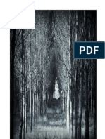 Breve manual de substâncias  mágicas naturais vol 1