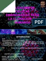 CELULAS EMBRIONARIAS-HUMANOS