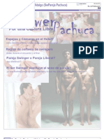 5 p. Boletin de SwPachuca #4 (PDF todo sobre la Cultura)