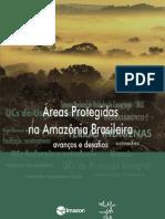 areas-protegidas-na-amazonia-brasileira-avancos-e (3)