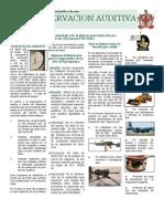 Boletin No 9 Conservacion Auditiva Version 2