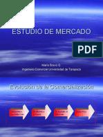 PEP 3 Estudio de Mercado