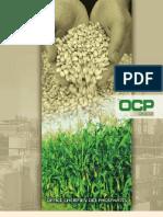OCP-Rapport2003