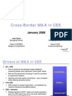 CEE M&a Activity 2006 Citi