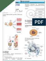 Bio Resumo.introd.citologia