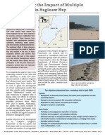 Managing the Impact of Multiple Stressors in Saginaw Bay