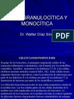 SERIE GRANULOCÍTICA Y MONOCÍTICA