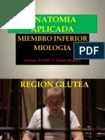 ANATOMIA APLICADA 10º MIOLOGIA MIEMBRO INFERIOR