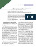 Anatomy Glossopharyngeal Jugular Foramen