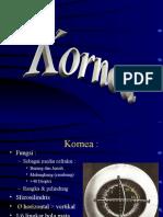 51987892-2-Kornea