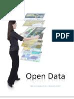 Open Data Gov20