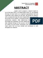 Final Report on Organizational Social Work