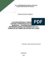 O OLHAR ESPACIAL E GEOGRÁFICO NA LEITURA E PERCEPÇÃO DA PAISAGEM MUNICIPAL - TCC vol I