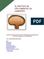 manual del champiñon