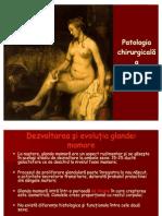 Curs 01 - Patologia Chirurgicala a Sanului