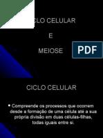 Ciclo Celular e Meiose Geral