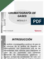 Módulo 7 CROMATOGRAFÍA DE GASES