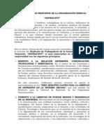 Declaración de Principios de la Organización Sindical - SINTRACNTV