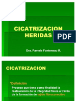 Cicatrización y heridas pto. de vista clínico.