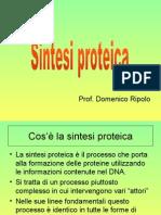 sintesi_proteica