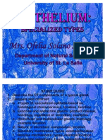 Epithelium Specialized Types