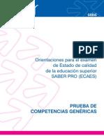 Guia Competencias Genericas V2 2011