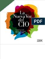 2009 CIO Study Español