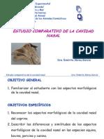 Atlas anatomía comparada[1]