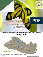 Presentacion  resultados investigacion de las mariposas diurnas parque nacional walther thilo deininger de El Salvador