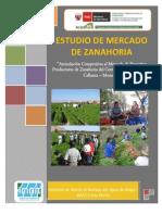 Estudio de Mercado de Zanahoria