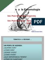 Introducción a la Entomología  Escuela de Biología Universidad de El Salvador . Por Ruben Sorto