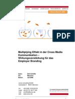Multiplyingeffekt Cross Media Als Wirkung