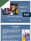 DETOX Draft #3-1