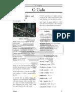 Jornal O Galo - Edição 2.1