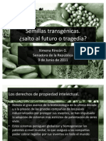 Semillas transgénicas ¿Salto al futuro o tragedia? - Ximena Rincón