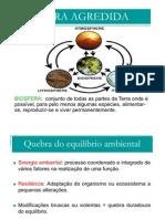 poluicao_ambiental