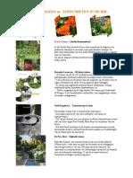 Nieuwe tuinboeken en -tijdschriften in de Bib