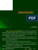 Curs Biochimie 2007 Acizi Nucleici