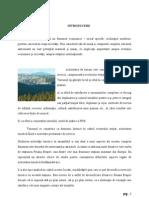 Diversificarea Serviciilor Turistice in Statiunea Poiana Brasov2