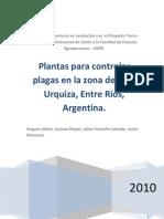 Plantas para controlar plagas en la zona de Villa Urquiza, Entre Ríos, Argentina.