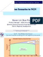 Migration Scenarios to NGN