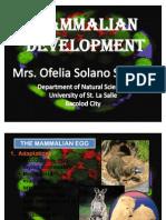 Mammalian Development