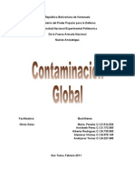 Contaminacion Global2