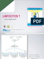 LINFOCITOS T 2011