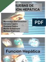 Seminario_p._hepaticas