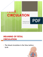 Fetal Circulation Ppt