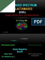 Laboratory Detection of ESBL