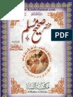 Mukhtasar Sahi Muslim
