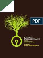 DOA, grupo musical de Galicia, actuará no máxico lugar de Penas de Rodas (Outeiro do Rei (Lugo) o Solsticio 21.5.2011 as 21h.