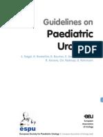 19 Paediatric Urology
